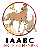 IAABC dog behavior consultant